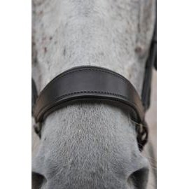 Dever Polo Drop Noseband