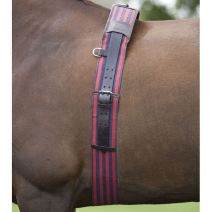Shires Web Lunging Roller