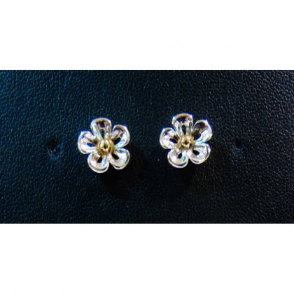 Charms UK Silver And Gp Flower Earrings