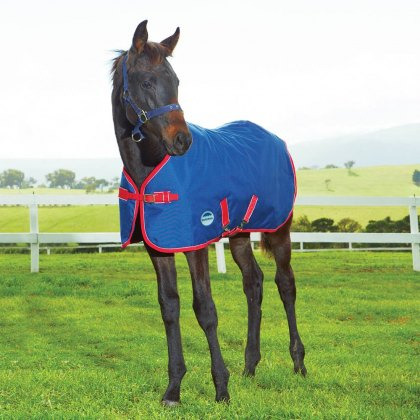 Weatherbeeta 1200D Foal Rug Medium