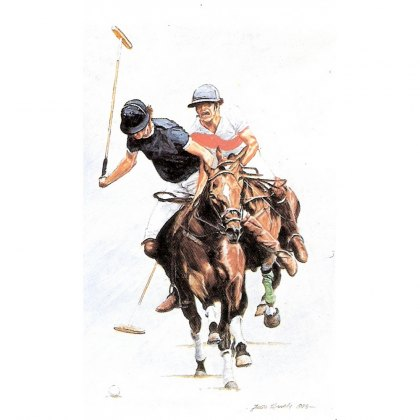 Polo Equipment for the Player