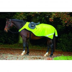 Horseware Amigo Reflective Competition Sheet