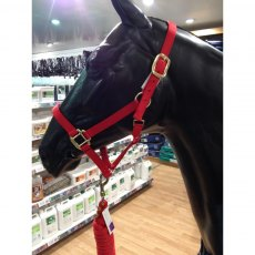 KM Elite Polo Headcollar