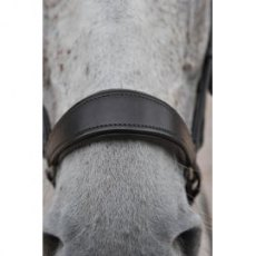 Ascot Polo Drop Noseband