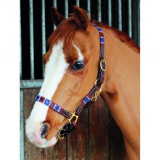 Celtic Equine Chukka Leather Headcollar