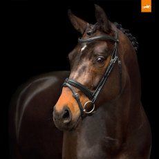Schockemohle Tokyo Select Bridle
