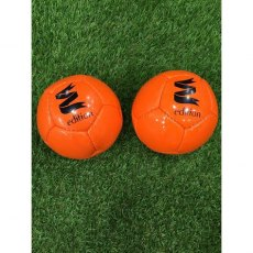Edition X Large Arena Polo Practise Ball