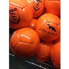 Pampeano Arena Polo Balls (Match Legal)