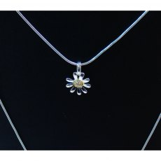 Charms UK Silver GP Daisy Pendant And Chain