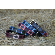 Celtic Equine Chukka Dog Collar