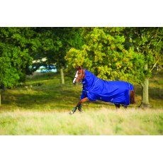 Horseware Amigo Hero 6 Plus Turnout Medium 200g SALE