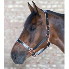 Rose Gold Lined Leather Headcollar