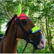 Equisafety Charlotte Dujardin Multi Coloured Horse Ears