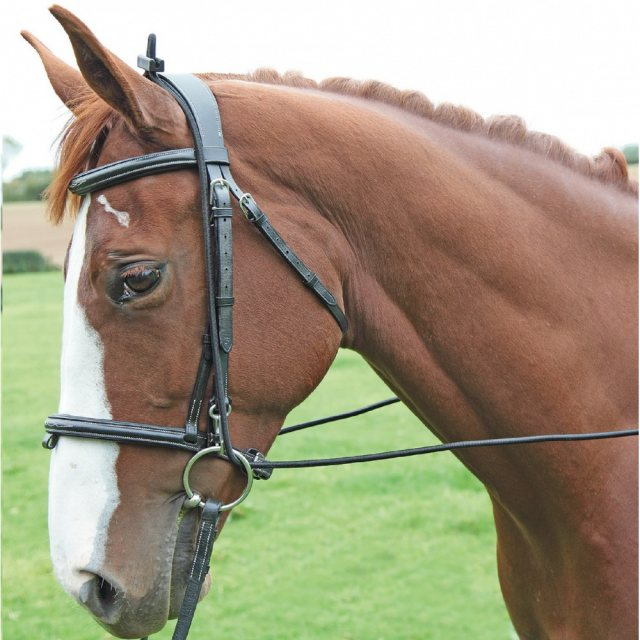 Shires Shires Elastic Training Reins